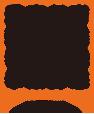 UD明朝体W5