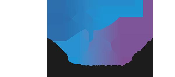 DynaSmart T DFOオプション